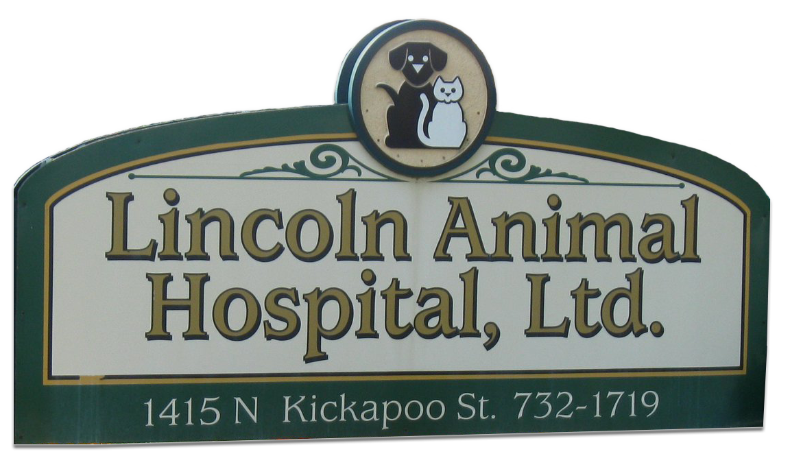 Vet Appointments in Lincoln, IL | Lincoln Animal Hospital